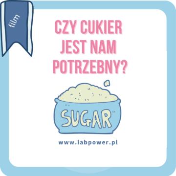 Czy cukier jest nam potrzebny?